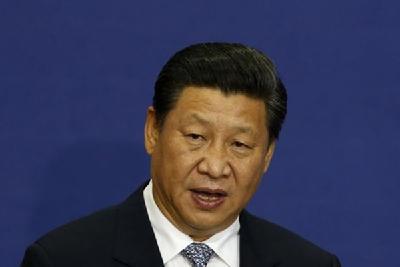 """大老虎""""-中国搜索"""